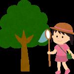 木と虫取り女の子